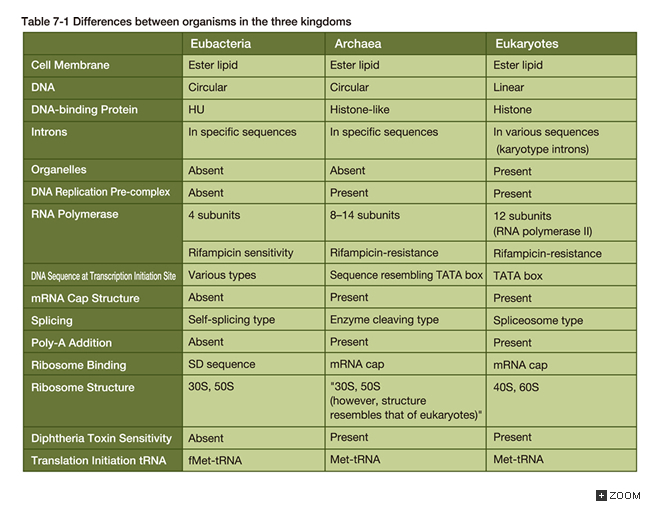 Table 7 1 the differences of organisms belonging to three domains
